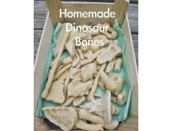 Homemade Dinosaur Bones