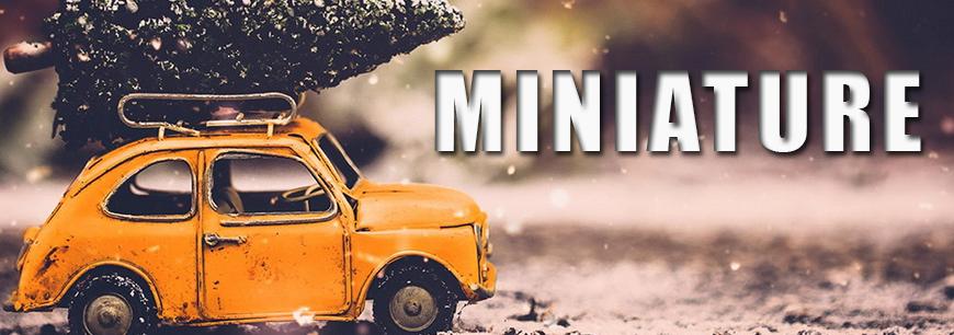 Miniature Models